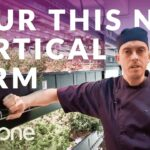 Vertical Farm Tour: See Inside Farm.One's Commercial Vertical Farm in New York